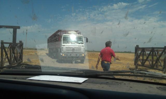 Argentina's heartland still motoring growth