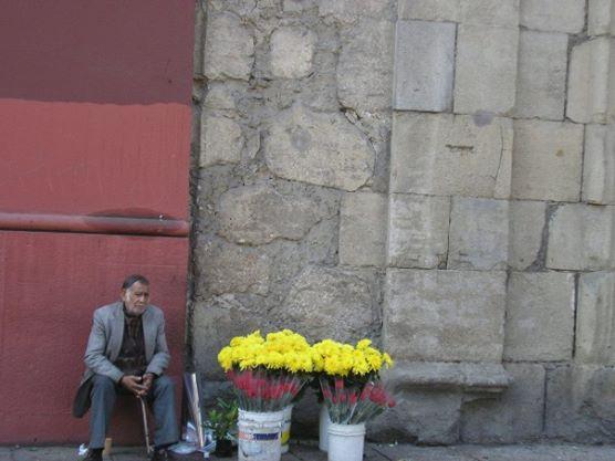 Flower vender, Santiago de Chile