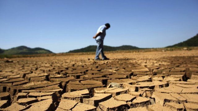 Extreme weather, such as prolonged drought, is leaving farmers out to pasture